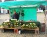 Betrieb Blumenkunst Schwede