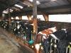 Bauernmarkt Betrieb Rolf Gerlach
