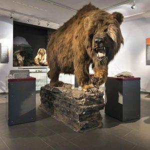 Familienführung: Leben in der Steinzeit @ Südsauerlandmuseum Attendorn | Attendorn | Germany