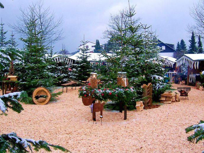 Thieringhausen - Weihnachtsmarkt