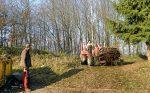 Gartenabfälle im Wald Olpe