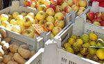 Markt Olpe - Wochenmarkt - Bauernmarkt