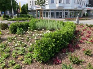 Neugestaltung Verkehrsinseln - Stadt Olpe